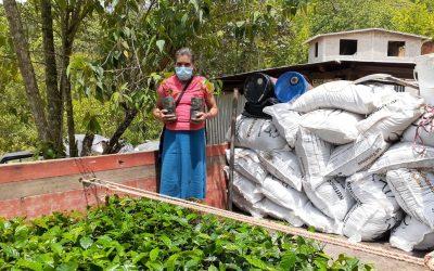 COMSA realiza la entrega de plantas con memoria