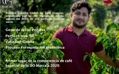 Primera Subasta Global de Cafés Especiales DO Marcala